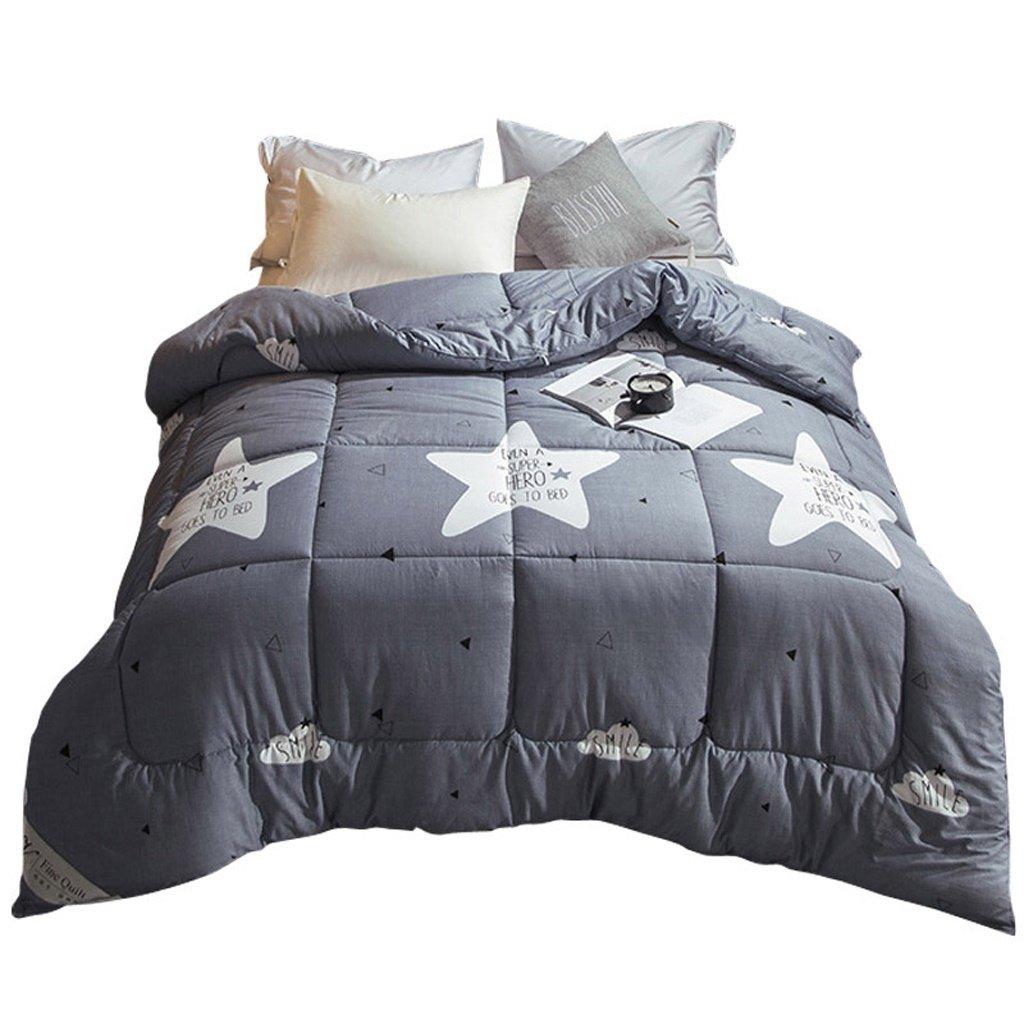MMM Coton Quilts Climatisation Printemps Et Automne Quilt Core Individu Double Épaississement Garder Chaude Literie
