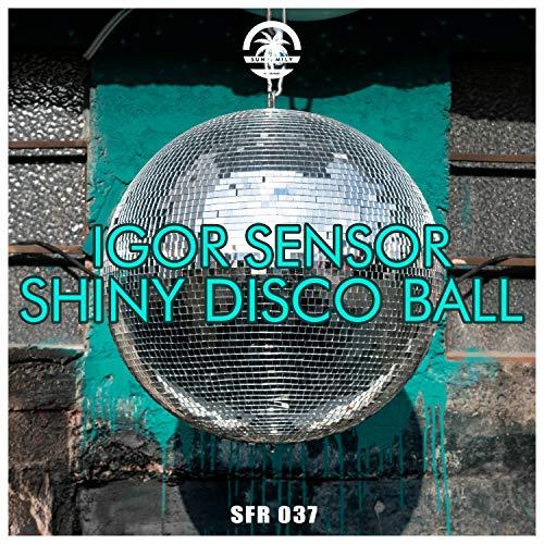 Shiny Disco Ball - Disco Balls Shiny
