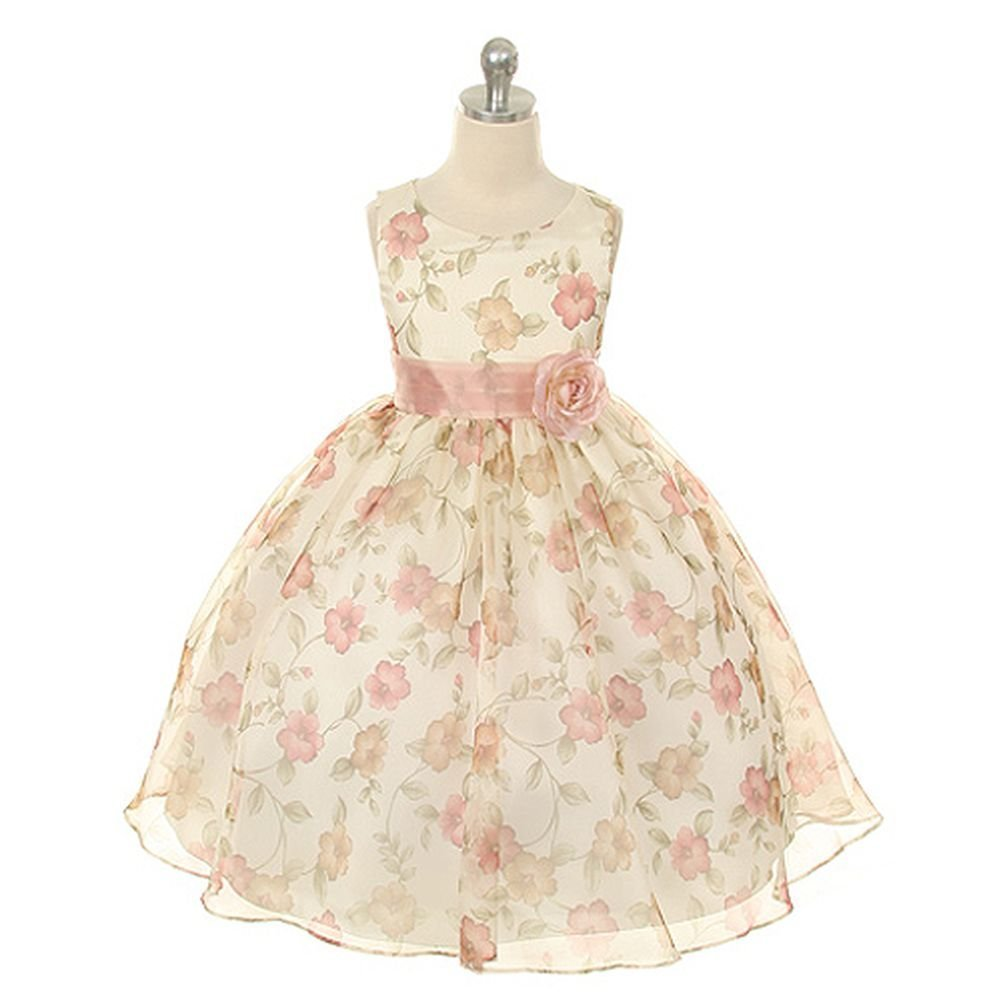 Kids Dream Girls Organza Floral Special Occasion Dress ap989631-$P