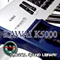 KAWAI K5000 Workstation - THE best sound of Kraftwerk - Large unique original 24bit WAVE/Kontakt Multi-Layer Samples/Loops Library. FREE USA Continental Shipping on DVD or download;