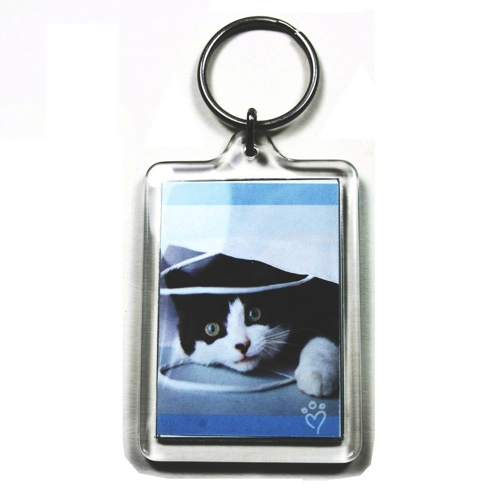 25 Large Blank Photo Keyrings 50 x 35 mm Insert 92033 PC3721