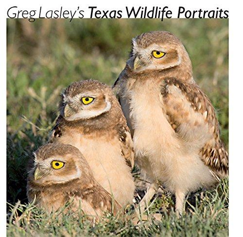 Greg Lasley's Texas Wildlife Portraits (Louise Lindsey Merrick Natural Environment Series)