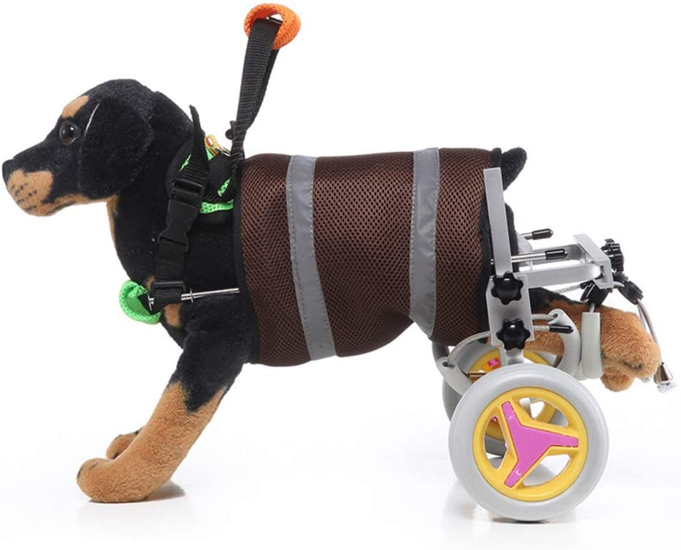 Veterinarian Approved Dog Wheelchair for Back Legs for Med/Large ...
