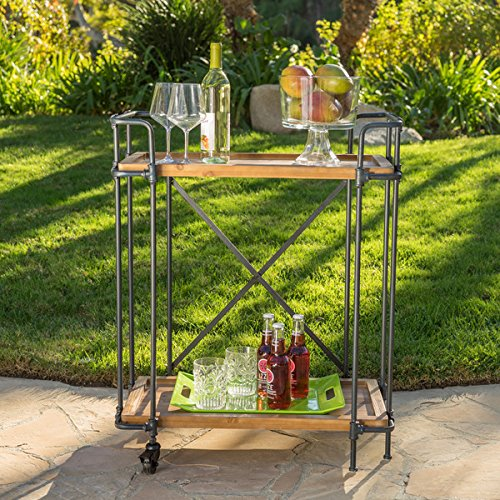 Eden Outdoor Antique Firwood and Iron Bar Cart by Christopher Knight Home by Christopher Knight Home