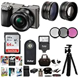 Sony Alpha a6000 24.3MP Mirrorless Camera 16-50mm (Graphite) + 64GB Accessory Bundle, Software Package, Wide