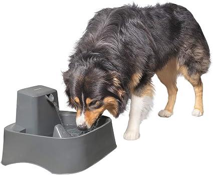 Amazon.com: PetSafe Drinkwell Fuente de agua, ideal para ...