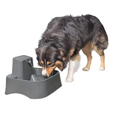 PetSafe Drinkwell 2 Gallon and Big Dog Pet Fountains, Automatic Dog and Cat Water Fountain, Best for Medium to Large Breeds and Multiple Pets