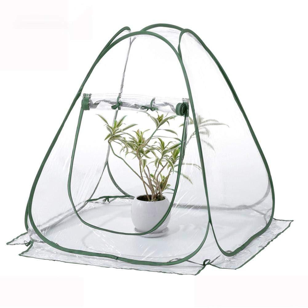 beautygoods Hivernage Tente pour Plantes À Serre Petite Serre Pot De Fleurs Plantes À Serre Plantes Mini Serre Protection Hiver pour Plantes À Serres