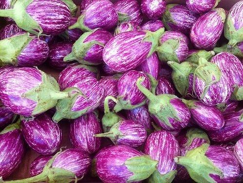 20+ ORGANICALLY GROWN Italian Listada De Gandia Eggplant Seeds, Heirloom NON-GMO, Aubergine, Productive, Beautiful, Rare, Striped, From - Italian Aubergine