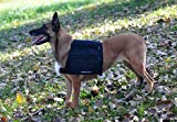 Small Weighted Vest, My Pet Supplies