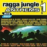 Ragga Jungle Anthems