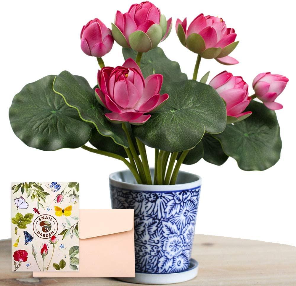 SNAIL GARDEN 2 Bouquets Artificial Lotus Flowers, Real-Touch Water Lily Simulation Tabletop Flower for Party, Home Office Arrangements Indoor Outdoor Decoration