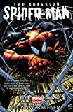 Image of Superior Spider-Man Vol. 1: My Own Worst Enemy