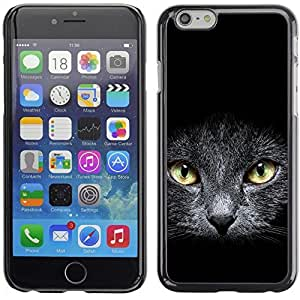 Graphic4You Black Cat Animal Design Hard Case Cover for Apple iPhone 6 Plus