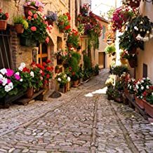 5x7ft Italy Travel Themed Photography Backdrop Italian Town Pot Flowers Village Alley Wedding Photo Backgrounds Stone Path Girls Studio Photo Potrait Background Props