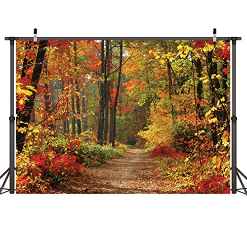 LYWYGG Autumn Scenery Deciduous Background 7x5ft Vinyl Deciduous Mountain Road Photography Backdrop Tree and Yellow Fall Leaves View Background Studio Props CP-67 ()