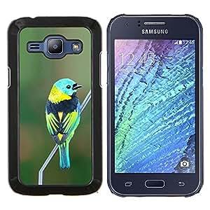 EJOOY---Cubierta de la caja de protección para la piel dura ** Samsung Galaxy J1 J100 ** --pájaro azul naturaleza verde rama verde azulado