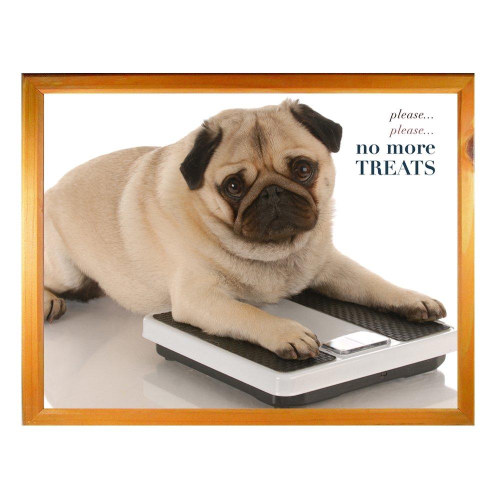 Amazing Heartwarmers Cute Pug Dog Please Please No More Treats Lap Tray Machost Co Dining Chair Design Ideas Machostcouk