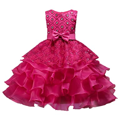 d0bc27c5c2ac Amazon.com  BaiXia Girls Sequin Crystal Embroidery Flower Ball Gown ...