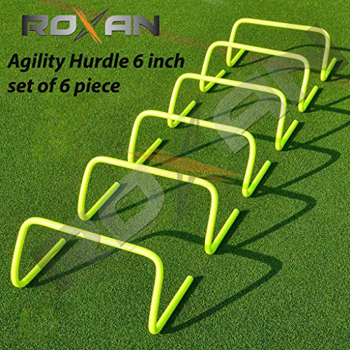 Roxan Agility Hurdle Parrot Green Color 6 INCH Set of 6 (Parrot Green, 6) Price & Reviews