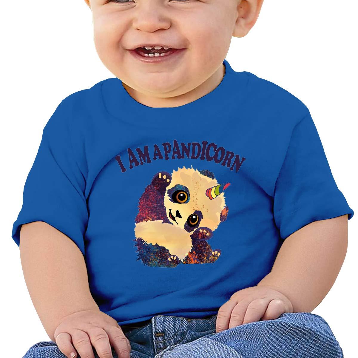 XHX403 I Am A Pandicorn Infant Kids T Shirt Cotton Tee Toddler Baby 6-18M