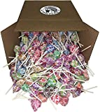Bulk Assorted Dum Dums Lollipops Candy (5 lbs)