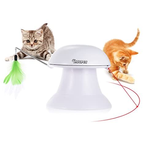 GatoAmazon Dadypet Juguete esProductos Mascotas Para thdxrQCs