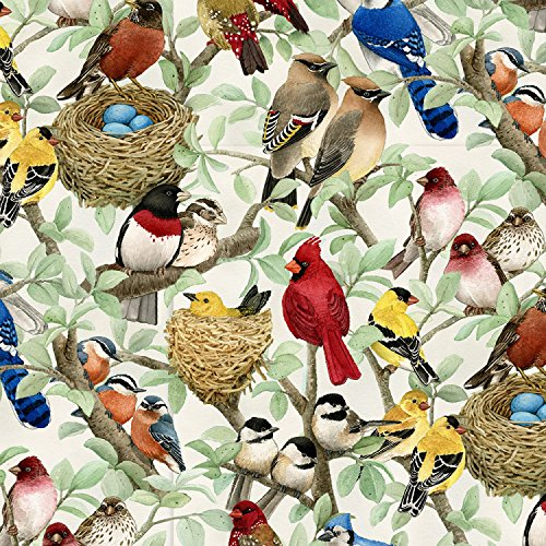 (Beautiful Birds by Tracy Lizotte from Elizabeth's Studio 100% Cotton Quilt Fabric By the Yard 4320 Cream)