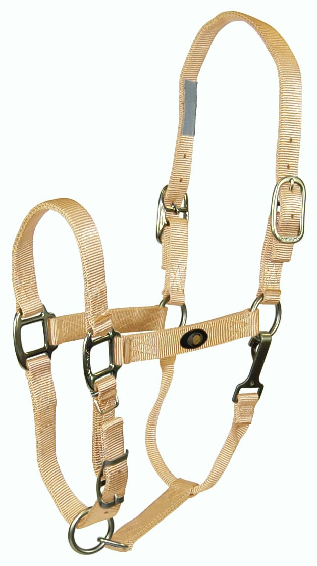 gold 300-500 lbs. (Yearling) gold 300-500 lbs. (Yearling) Hamilton 1  Nylon Adjustable Horse Halter with Brushed Hardware and Snap (300 to 500 lb. Horse), gold, (B 1DAS YRGD), Yearling