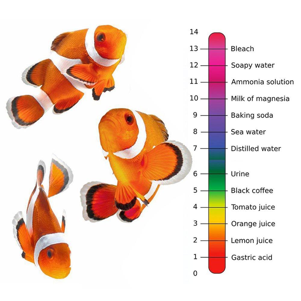 honmofun PH 4.01 6,86 7.00 9.18 10.01 PH solución tampón de pH ph Buffer polvo de polvo de almohadillas fácil de pH medidor de pH búfer búfer de soluciones ...