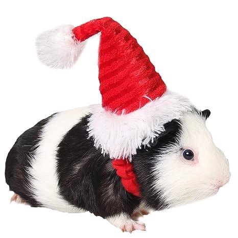 zuckerti sombrero gorro para Fiesta Día Halloween Navidad Navidad, Cumpleaños Disfraz Para Gato Gatos Perros
