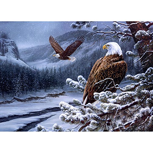 Moohue Needlework 14ct Counted Cross Stitch Kits Animal Winter Eagle DMC Thread Cross Stitch Patterns Cross Stitch Fabric Needles Room Wall Decoration (Winter Eagle)