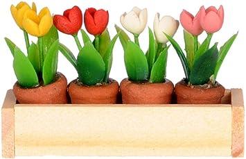 Amazon.es: Melody Jane Casa de Muñecas Miniatura Caja Ventana con / Flor Ollas por International Miniaturas: Juguetes y juegos