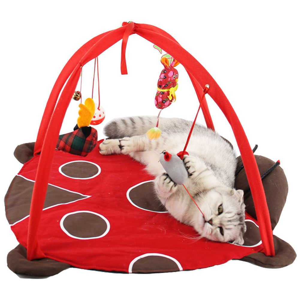 Itsmypet Pet cats playing bed tent cat litter toy puzzle funny cat toys (red)