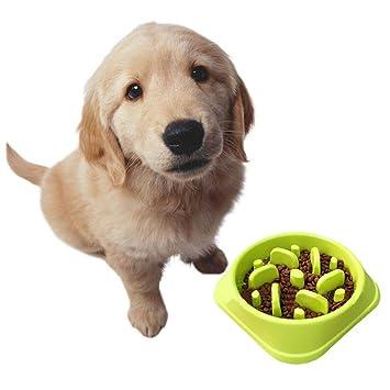 Lezed Perros Gatos Comedero Mascotas Comedero Interactivo Slow Feeder Slow Food Perros Cuenco Herramientas Plástico Antideslizante tazones Gran Capacidad ...