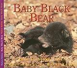 Baby Black Bear, Aubrey Lang, 1554550971