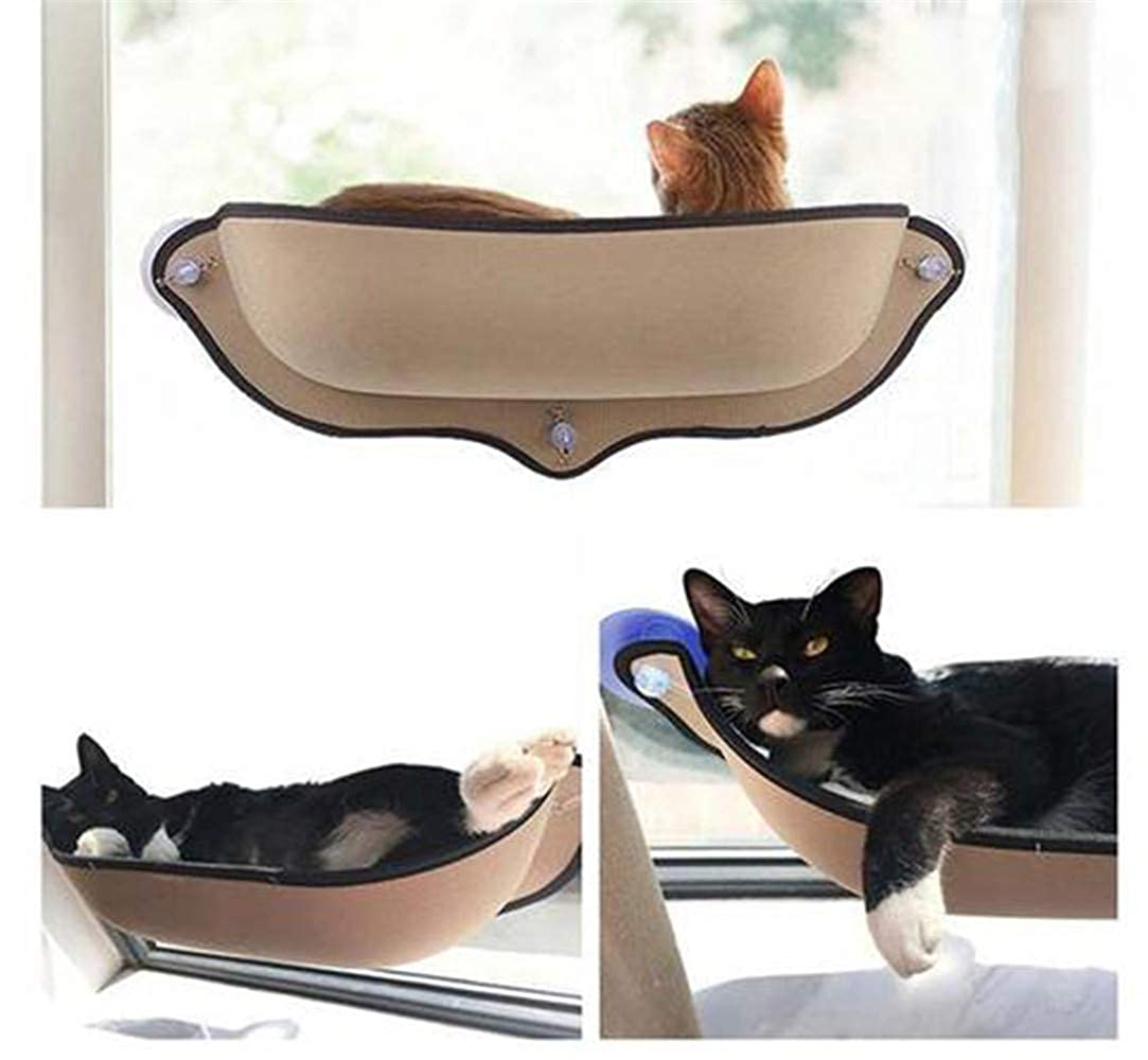 Amazon.com: DedSecQAQ - Cama para ventana de gato, con ...