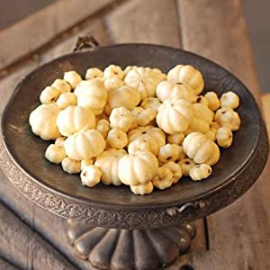 Bagged Set of Miniature White Cream Faux Pumpkin Decorations in Assorted Sizes - Rustic Country Harvest Home Decor – Elegant Fall Wedding Bowl Filler Centerpieces for Table