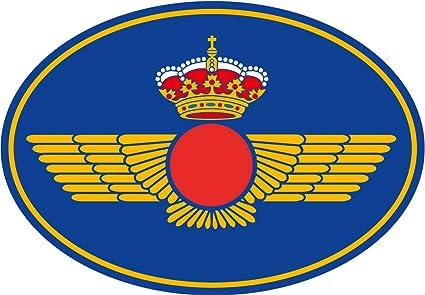 Artimagen Pegatina Oval Logotipo Ejército del Aire 65x45 mm.: Amazon.es: Coche y moto
