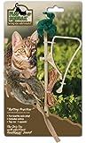 Our Pets Play-N-Squeak - Door Hanger