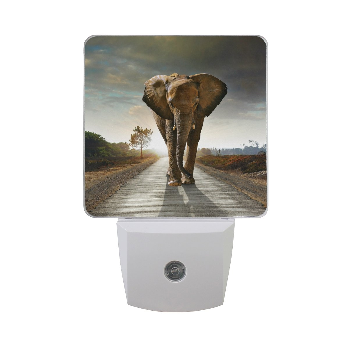 TropicalLife Set of 2 Goodnight 3D Animal African Elephant Theme LED Night Light Dusk to Dawn Sensor Plug in Designs Indoor Home Decor for Adult Kids Baby Children