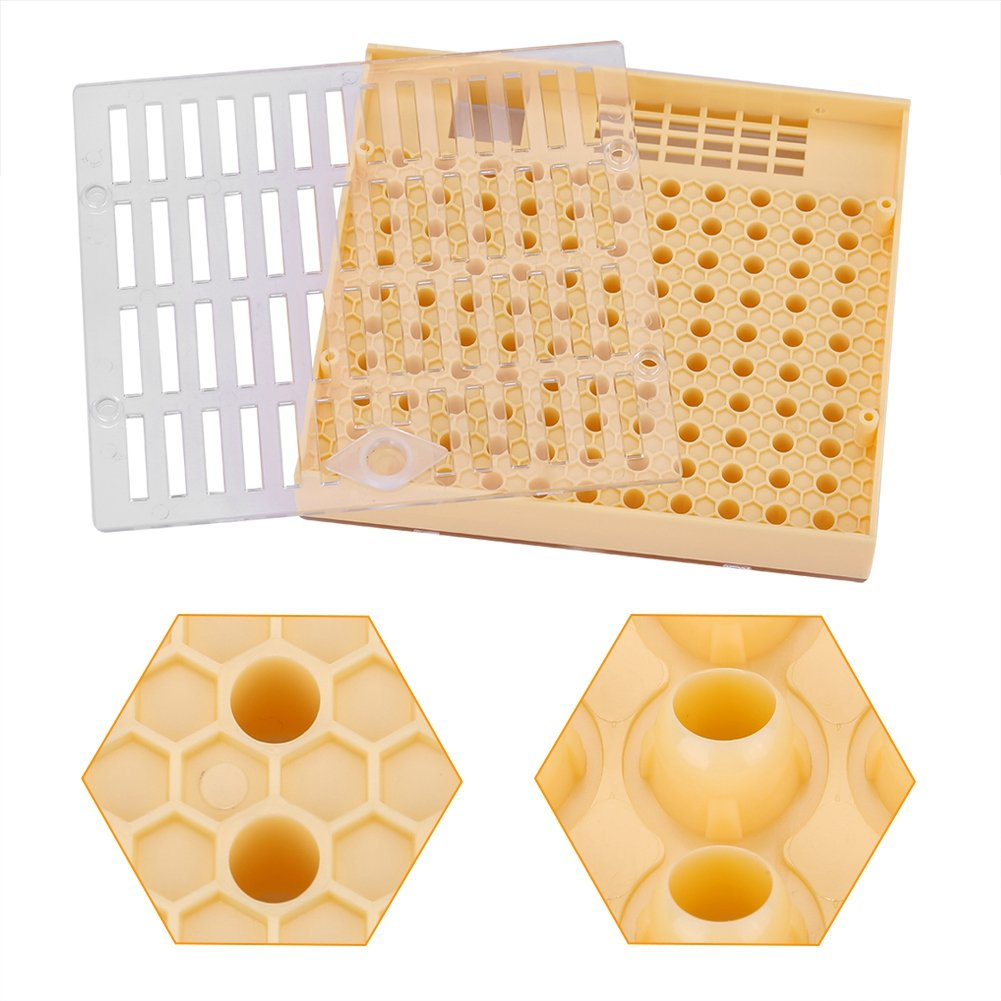 Zerodis Boîte à Abeilles Apiculture Reine Cellule d'Élevage Boîte Bee Keeper Kit Catcher Cage Équipement Outil Non-toxique d'Apiculture Pour Cupularve Système Apiculture