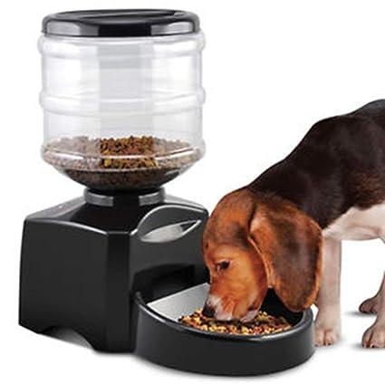 Pet Comedero automático para Mascotas Dispensador de Comida para Perros y Gatos 5.5L Gran Capacidad Tres Comidas en la mañana, Tarde y Noche Sincronización ...