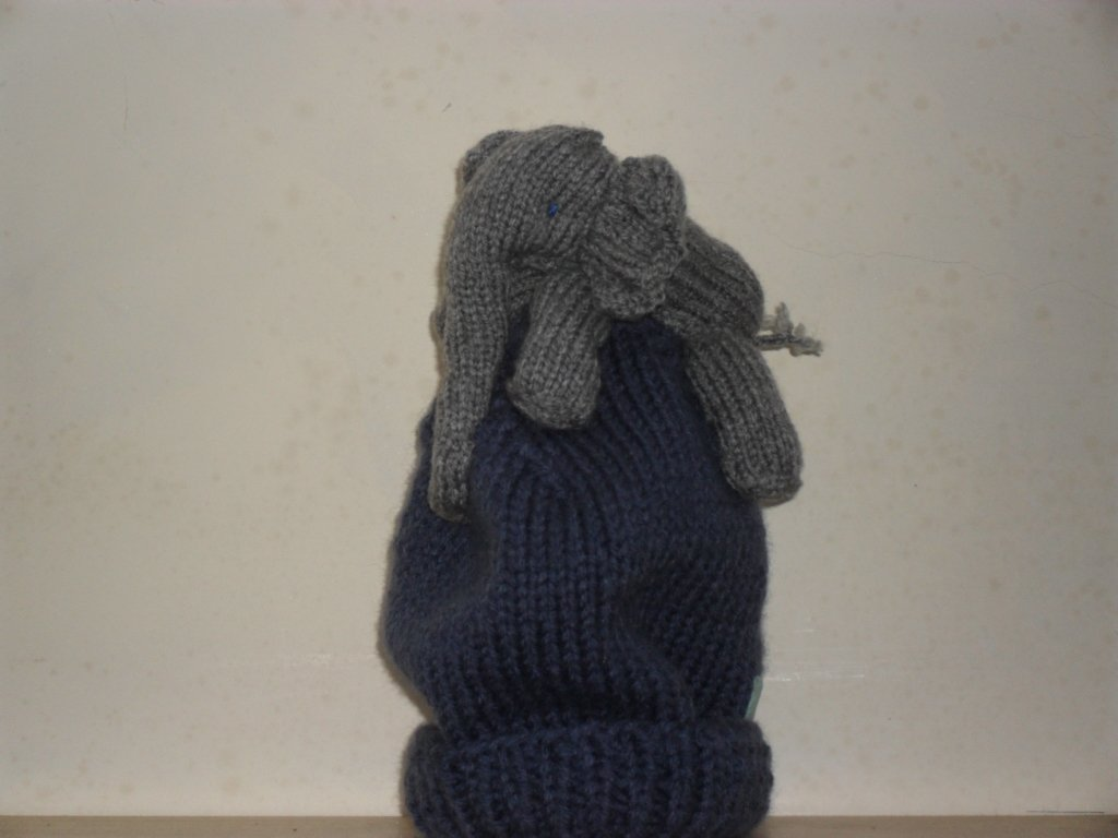 Hand knitted 3D ELEPHANT hat. Any size.