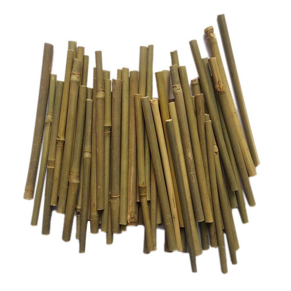 Bamboo Sticks 5 Inch Long 0.1 0.2 Inch in Diameter for DIY Crafts Photo Props Craft Supplies for Crafts 100pcs