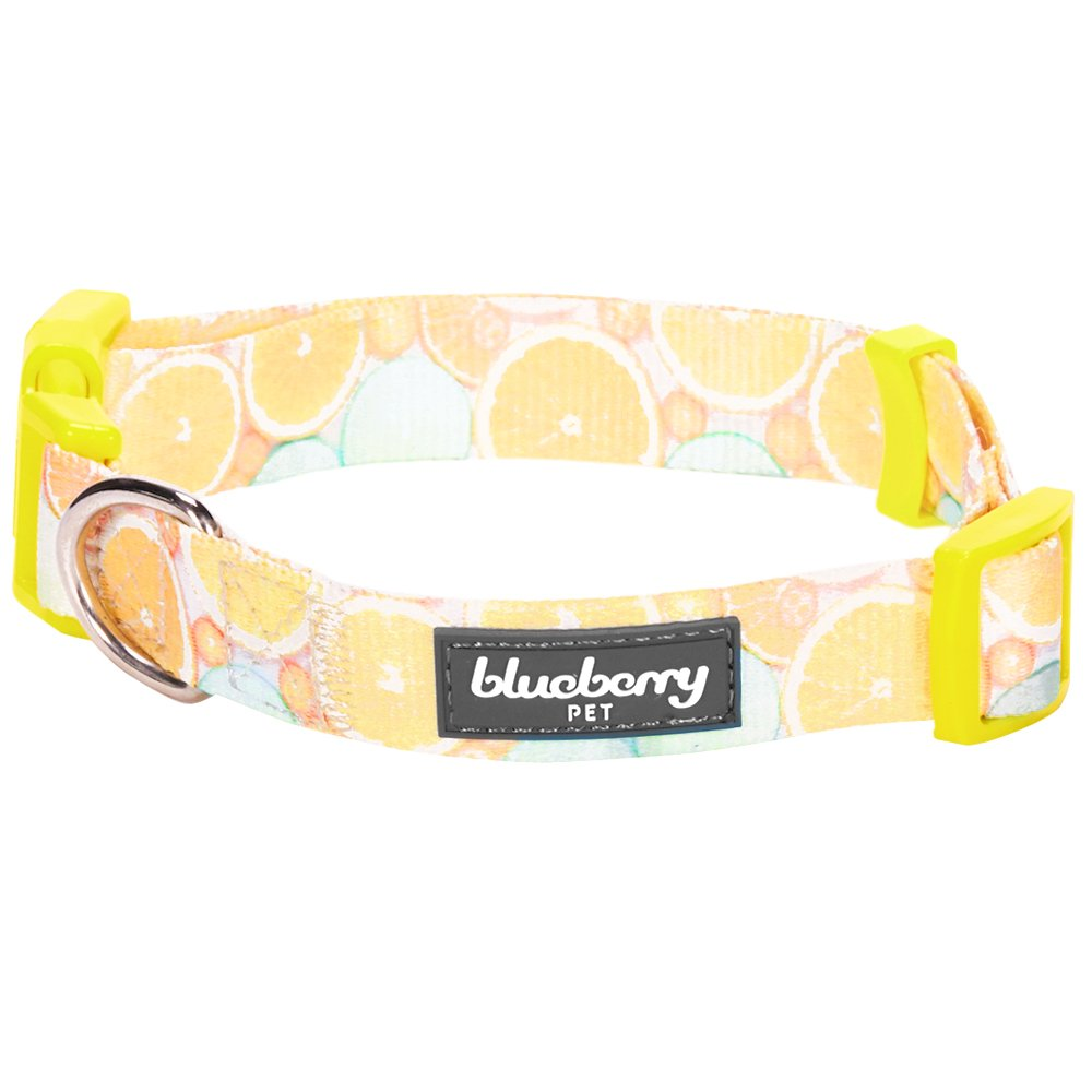 Blueberry Pet 8 Patterns Personalized Dog Collar, Lemon, Small, Adjustable Customized ID Collars for Small Dogs Embroidered with Pet Name & Phone Number by Blueberry Pet (Image #5)