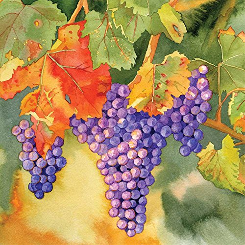 Harvest Vineyard (Paperproducts Design Vineyard Harvest Beverage Napkins, 5 x 5