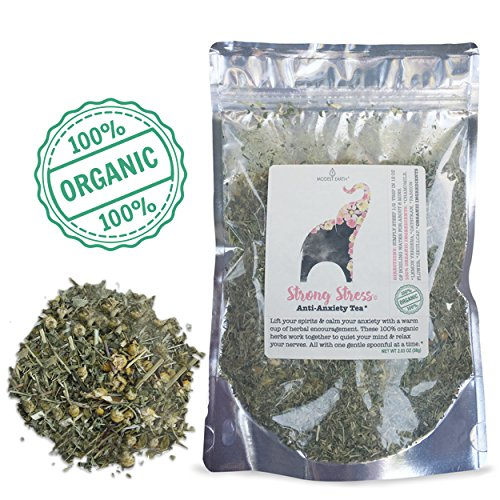 Modest Earth Strong Stress Tea | 100% ORGANIC Calming, HERBAL STRESS RELIEF | Natural Depression, ANXIETY & Cortisol Manager | SKULLCAP BLEND | Relaxing Remedy & Sleep Aid | 48+ SERVING Bag (2.03 OZ) (Best Tea For Stress And Depression)