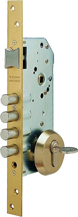 Tesa Assa Abloy R100B666E, Cerraduras de seguridad, Entrada 60, Acabado, Acero esmaltado, Con escudo de seguridad E300L: Amazon.es: Bricolaje y herramientas