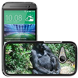 Hot Style Cell Phone PC Hard Case Cover // M00111940 Gorilla Ape Primate Wildlife Wild // HTC One Mini 2 / M8 MINI / (Not Fits M8)